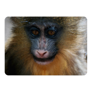 Niedlicher Mandrill Affe Personalisierte Ankündigungen