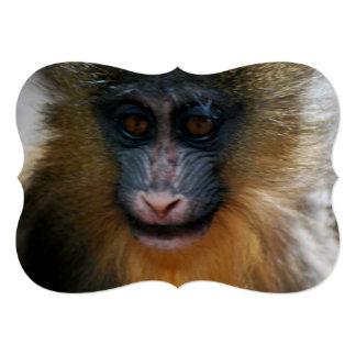 Niedlicher Mandrill Affe Personalisierte Ankündigungskarte
