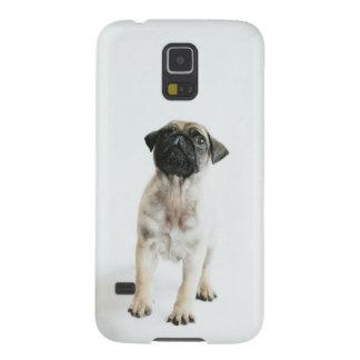 Niedlicher Mops-Welpe Samsung S5 Cover