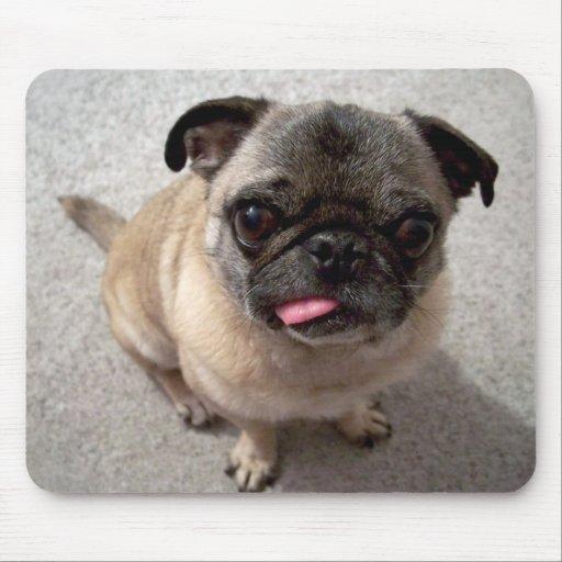 Niedlicher Mops-Welpen-Hund, der heraus Zunge Mous Mousepads