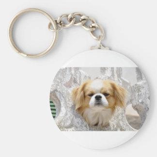 Niedlicher Pekingese Hund Schlüsselanhänger