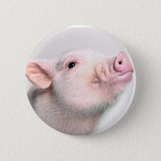 Niedlicher Piggy Knopf Runder Button 5,1 Cm