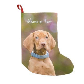 Niedlicher puppyeyed Ungar Vizsla Hundewelpe - Kleiner Weihnachtsstrumpf
