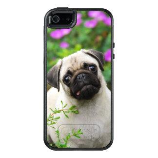 Niedlicher rehbrauner Mops-Welpen-Hund schützen an OtterBox iPhone 5/5s/SE Hülle