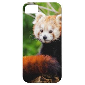 Niedlicher roter Panda-Bär Etui Fürs iPhone 5