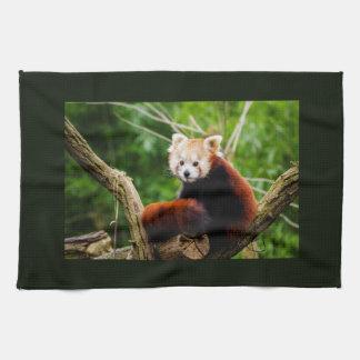 Niedlicher roter Panda-Bär Handtuch