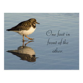 Niedlicher Sadpiper Vogel-motivierend Postkarte
