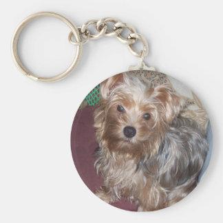 Niedlicher Schlüsselring Yorkshire-Terriers Schlüsselanhänger