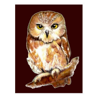 Niedlicher Watercolor sah Whet Eule, Vogel, Tier Postkarten