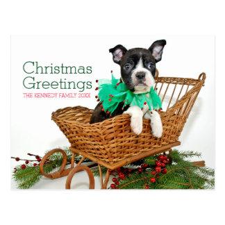 Niedlicher Weihnachtsboston-Terrierwelpe Postkarte