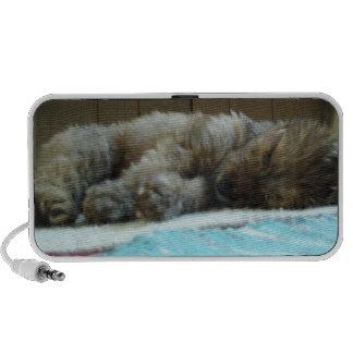 niedlicher Welpe schlafend auf Wolldecke Notebook Speaker