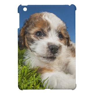 Niedlicher Welpenhund (Shitzu) iPad Mini Hülle