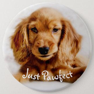 Cute Cocker Spaniel Dog Badge/Pin