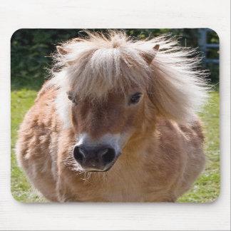 Niedliches die Shetlandinseln-Ponykopfnahaufnahme Mauspads