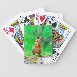 Niedliches Eichhörnchen Bicycle Spielkarten