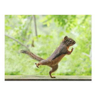 Niedliches Eichhörnchen, das Tai-Chi tut Postkarten