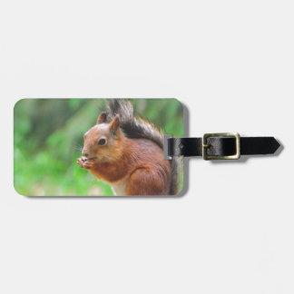 Niedliches Eichhörnchen Gepäckanhänger
