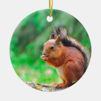 Niedliches Eichhörnchen Keramik Ornament