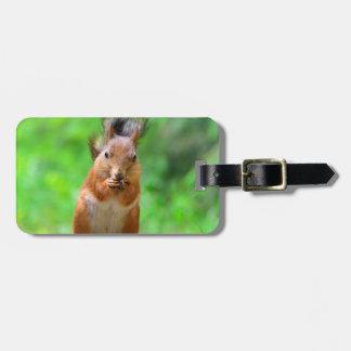 Niedliches Eichhörnchen Kofferanhänger