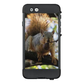 Niedliches Eichhörnchen mit einem LifeProof NÜÜD iPhone 6 Hülle