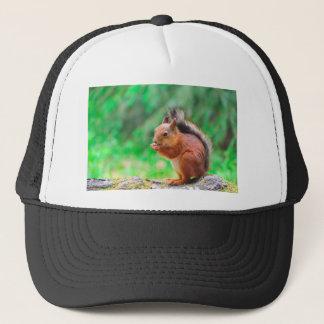 Niedliches Eichhörnchen Truckerkappe
