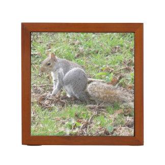 Niedliches Eichhörnchen-Verkratzen Stifthalter