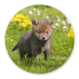 Niedliches flaumiges rotes wildes Baby Fox CUB - Keramikknauf
