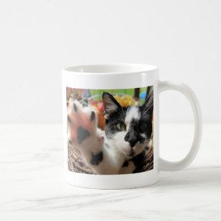 """Niedliches Foto der Katzen-""""hohe fünf"""" Kaffeetasse"""
