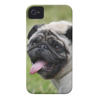 Niedliches Foto des mutigen Kastens des Case-Mate iPhone 4 Hüllen