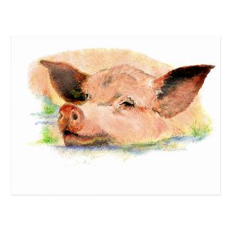 Niedliches glückliches als Schwein im Schlamm, Postkarte