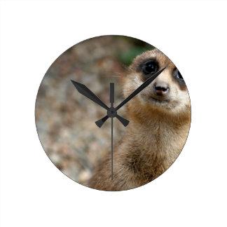 Niedliches Groß-Mit Augen Meerkat Runde Wanduhr
