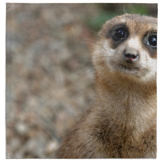Niedliches Groß-Mit Augen Meerkat Stoffserviette