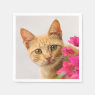 Niedliches Ingwer-Katzen-Kätzchen-aufpassendes Papierservietten