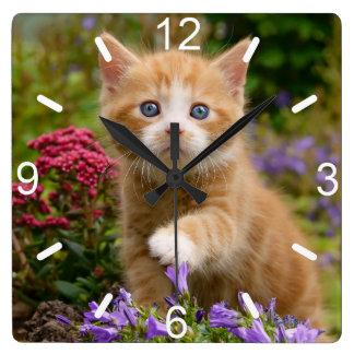 Niedliches Ingwer-Katzen-Kätzchen in der Quadratische Wanduhr