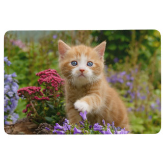 Niedliches Ingwer-Katzen-Kätzchen in einem Bodenmatte