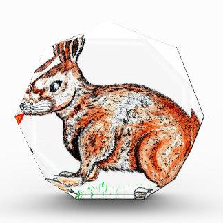 Niedliches Kaninchen-Zeichnen Auszeichnung