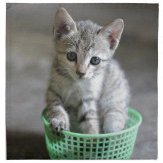 Niedliches Kätzchen, das in einem grünen Korb Serviette