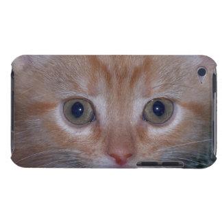 Niedliches Kätzchen iPod Case-Mate Hülle