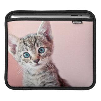 Niedliches Kätzchen mit blauen Augen iPad Sleeve
