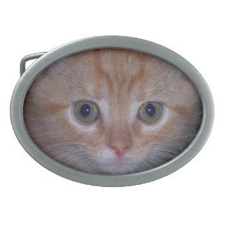 Niedliches Kätzchen Ovale Gürtelschnalle