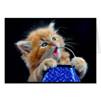 Niedliches Kätzchenkauen Grußkarte