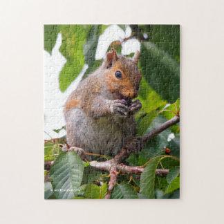 Niedliches Kirschsammeln-Ostgrau-Eichhörnchen Puzzle
