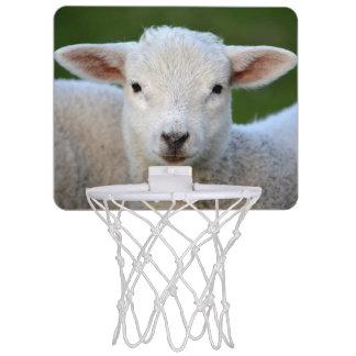Niedliches Lammporträt Mini Basketball Ring