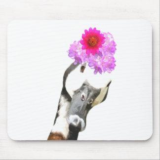 Niedliches lustiges entzückendes Vieh der Gans Mousepad