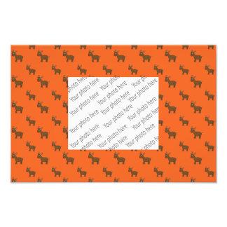 Niedliches orange Renmuster Fotografischer Druck