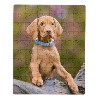 Niedliches puppyeyed Ungar Vizsla Puzzle