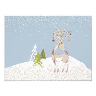 Niedliches Ren und Robin im Schnee Fotodruck