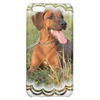 Niedliches Rhodesian Ridgeback iPhone 5C Schale