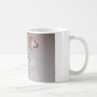 Niedliches Schlafengoldener Retriever mit Kaffeetasse