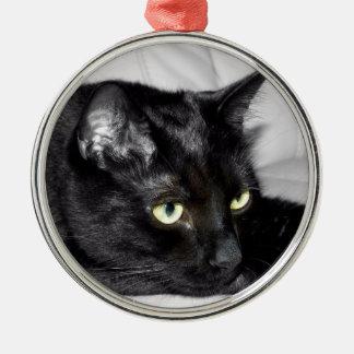 Niedliches schwarze Katzen-Porträt Silbernes Ornament